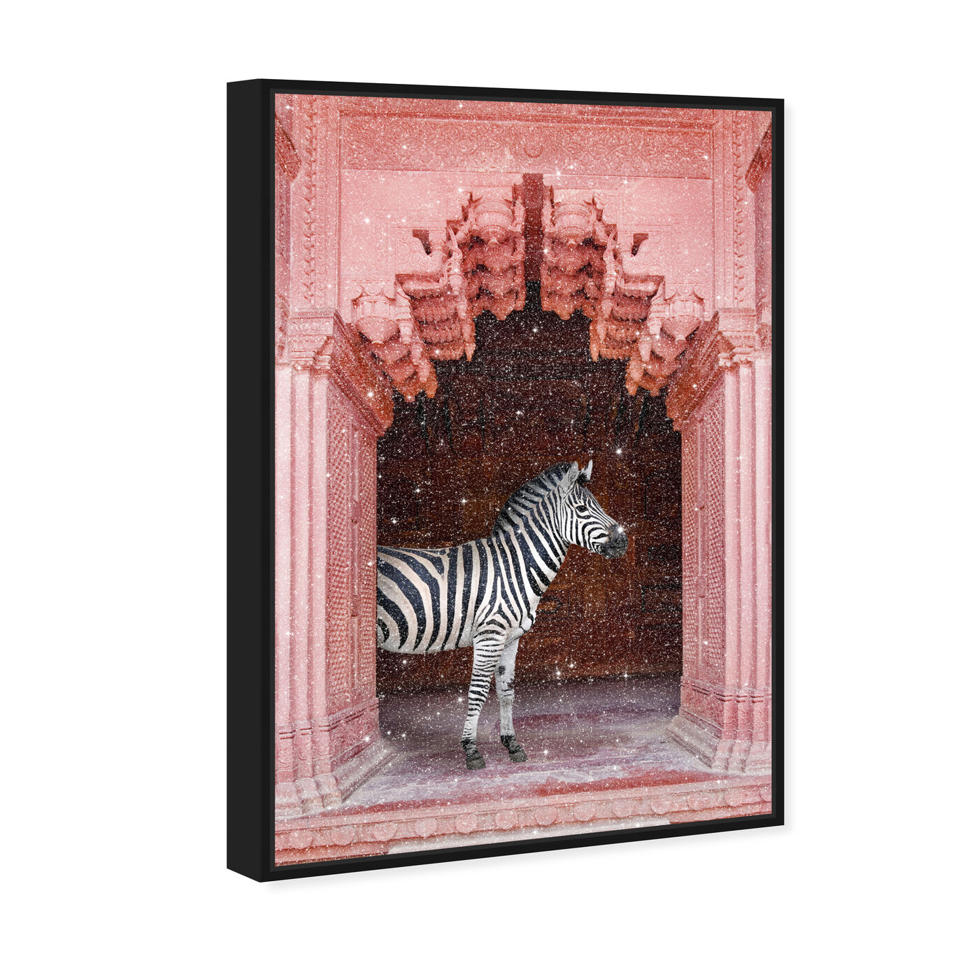 33276 Zebras Apartment is Coral Pink