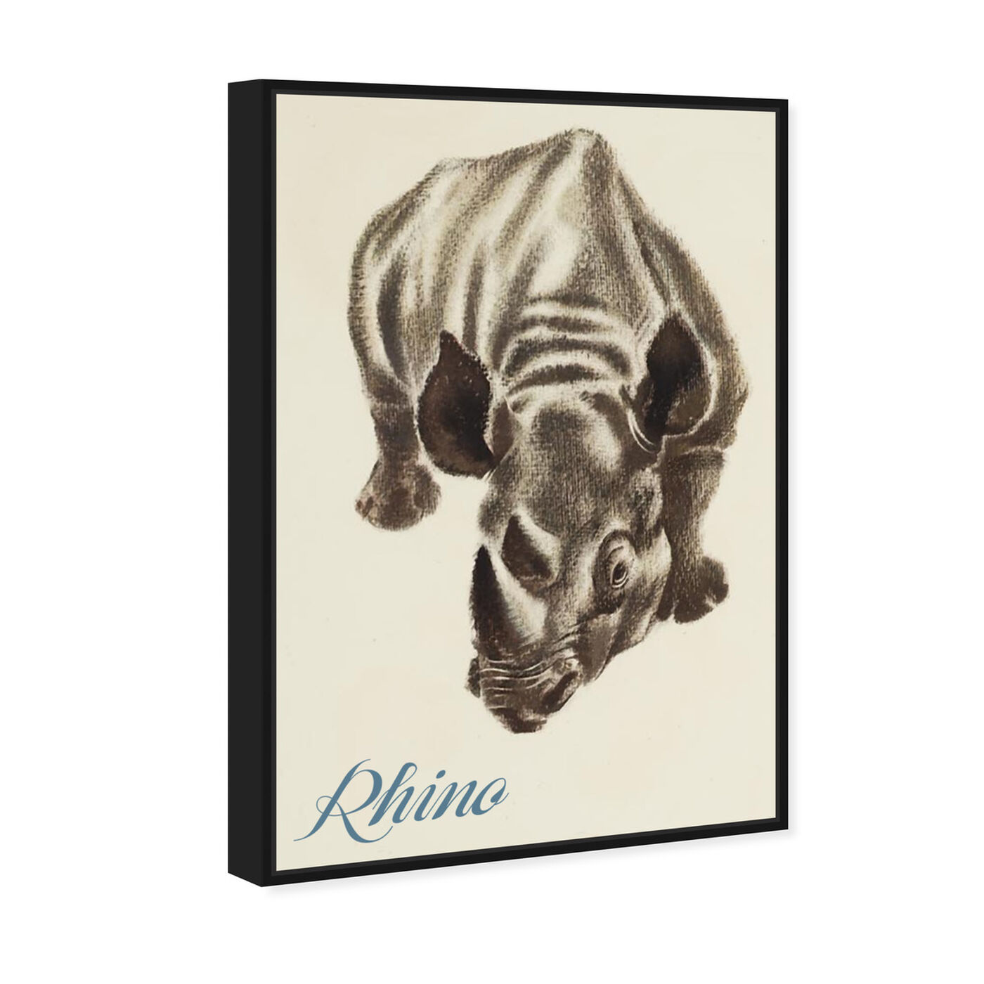 Angled view of Rhino featuring animals and zoo and wild animals art.