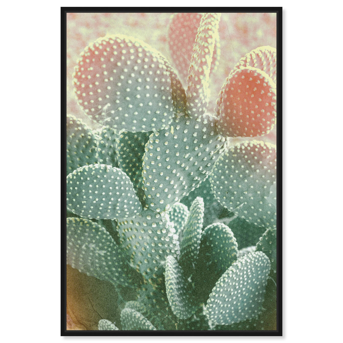 Front view of Blushing Cactus featuring floral and botanical and botanicals art.