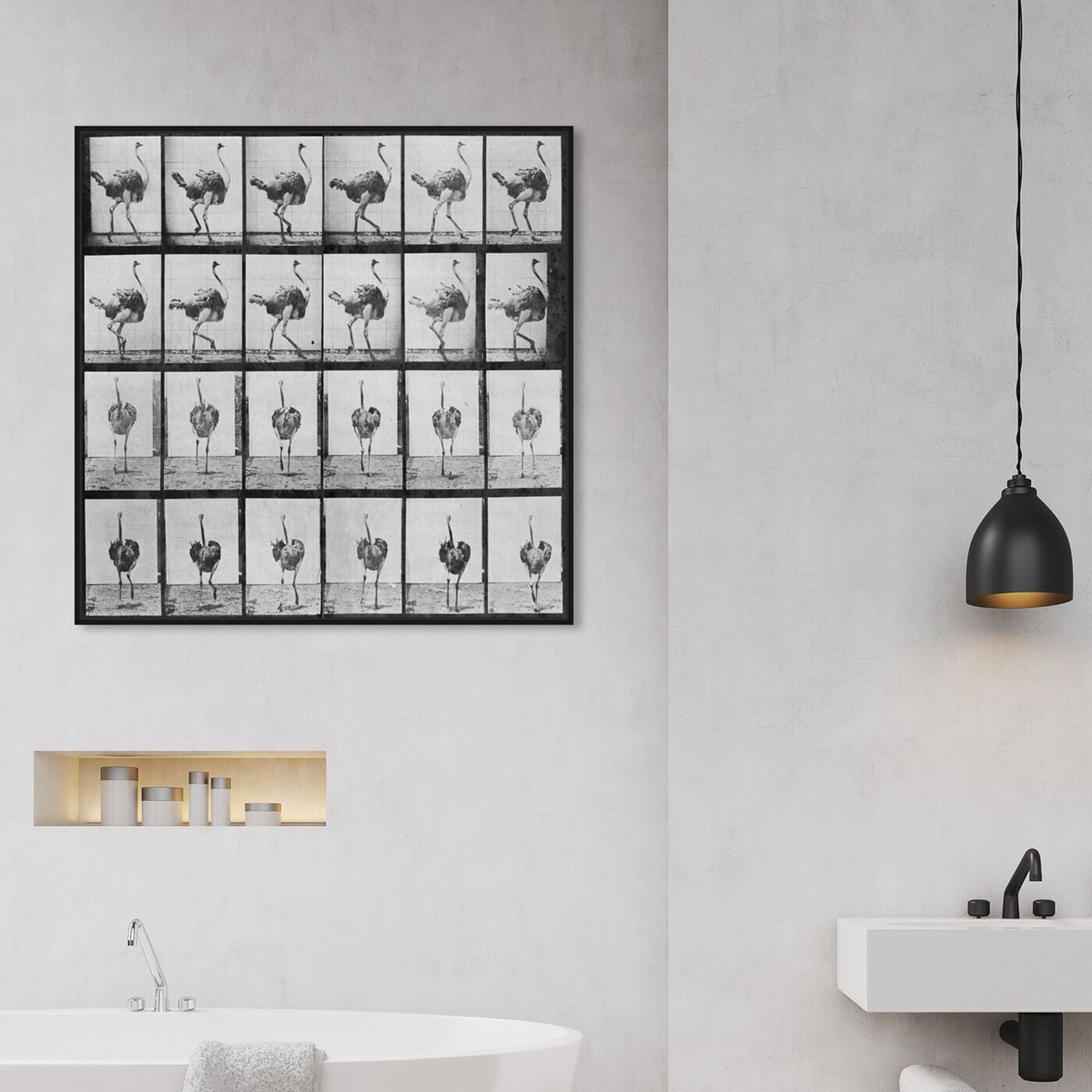 Hanging view of Ostrich in Motion featuring animals and birds art.