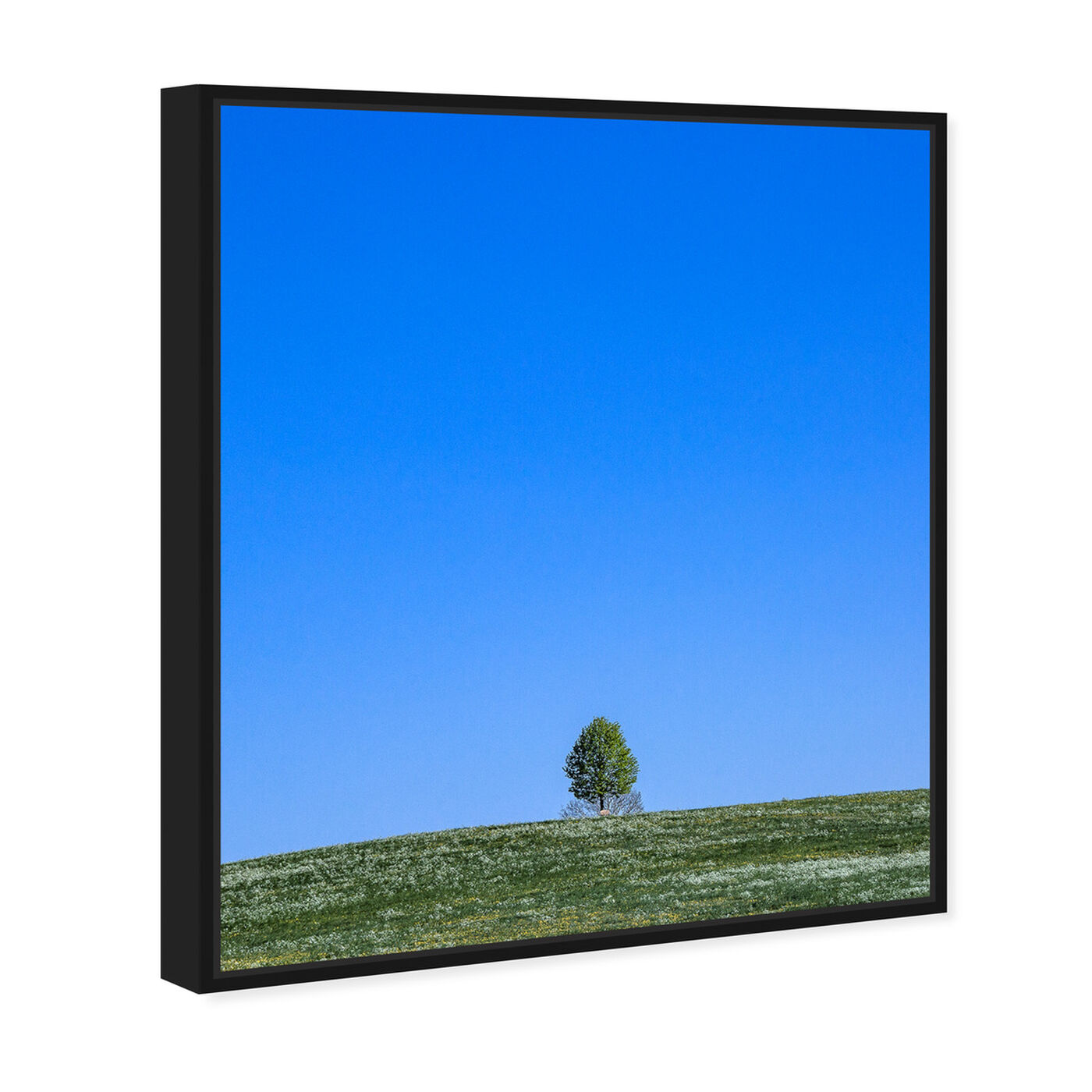 Angled view of Curro Cardenal - Tranquility Field II featuring nature and landscape and skyscapes art.