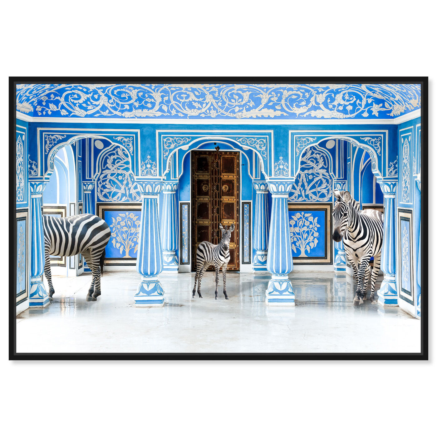 Front view of Zebra Blues featuring animals and zoo and wild animals art.