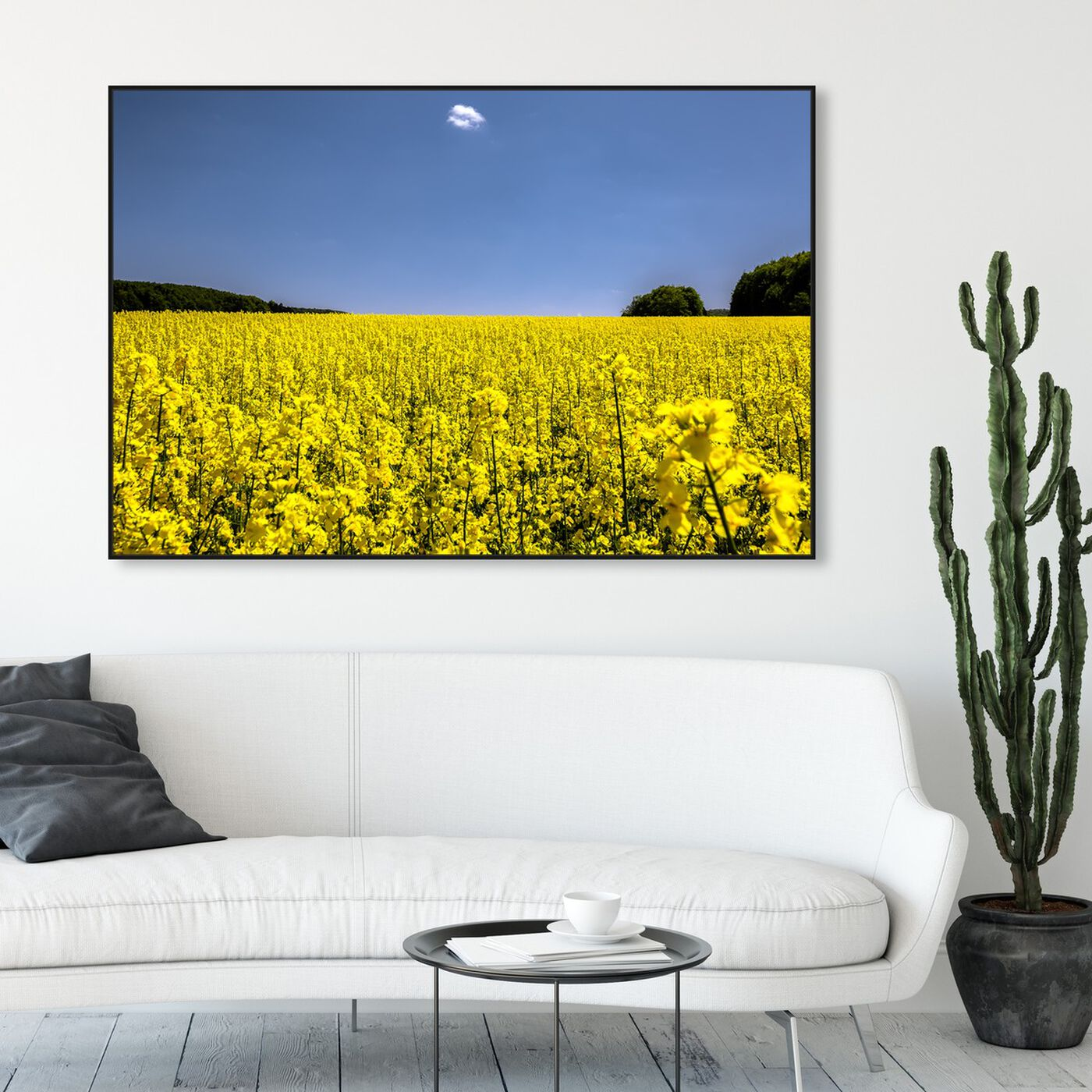 Hanging view of Curro Cardenal - Fields of Gold II featuring nature and landscape and country landscapes art.