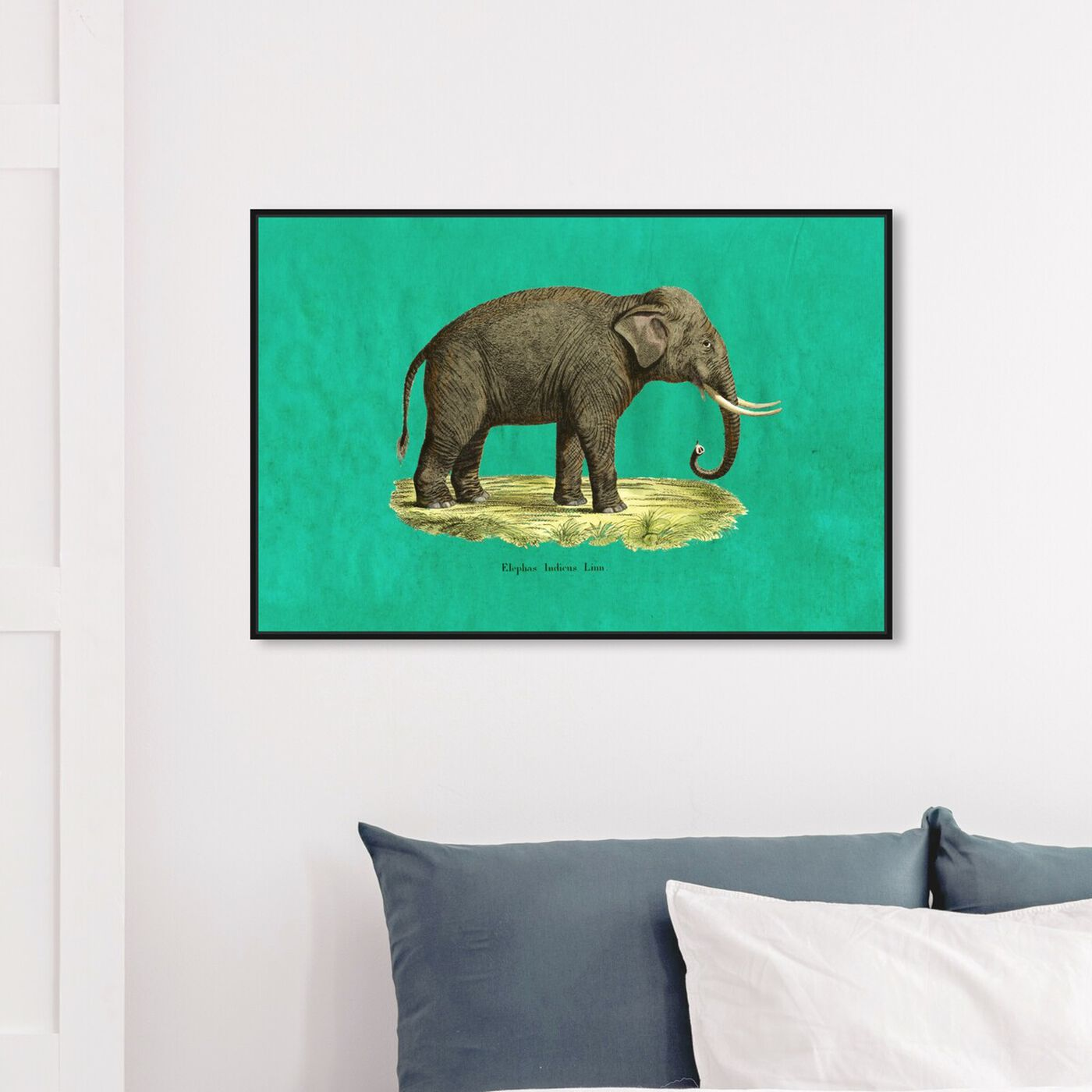 Hanging view of Elephant I featuring animals and zoo and wild animals art.