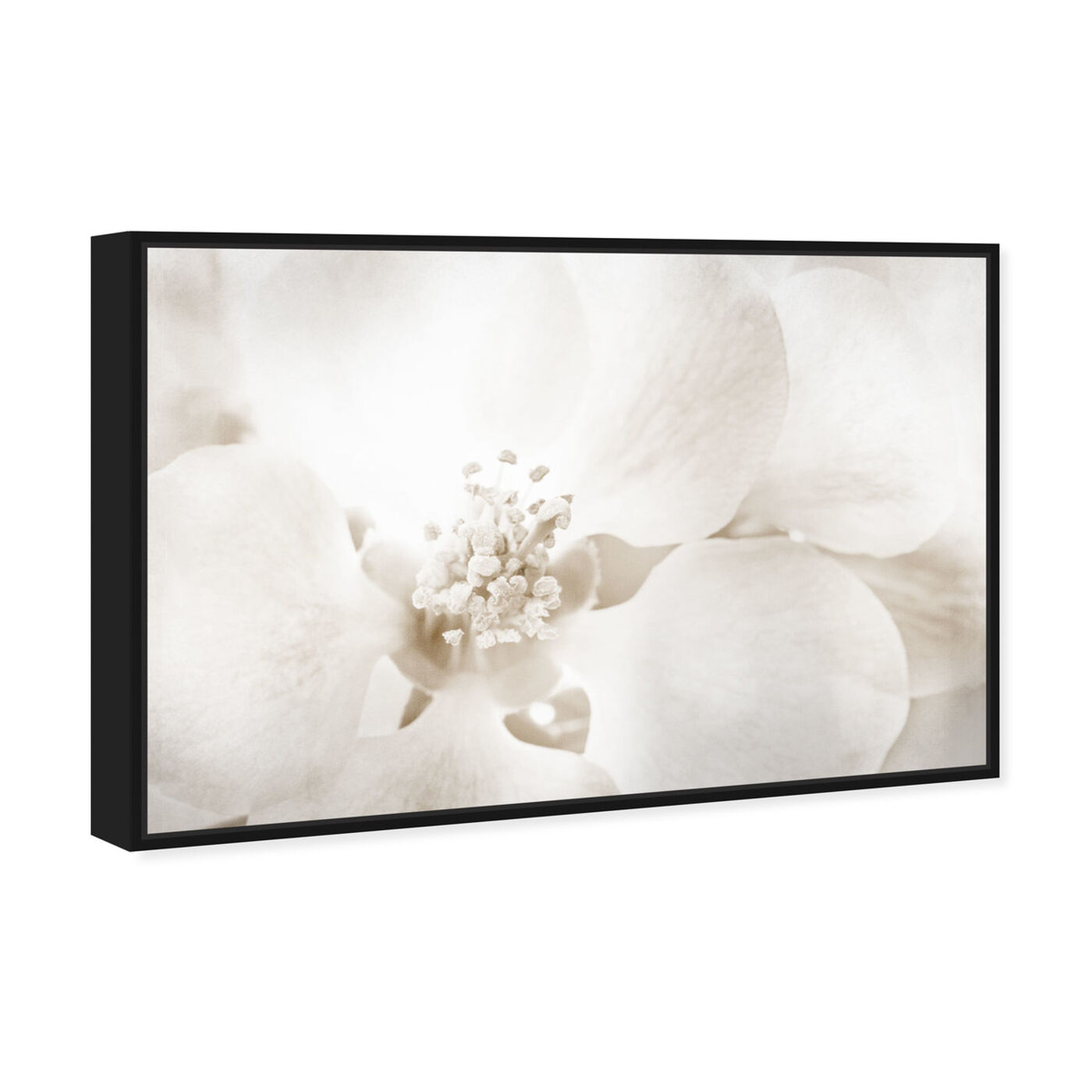 Angled view of Orchid Love featuring floral and botanical and florals art.