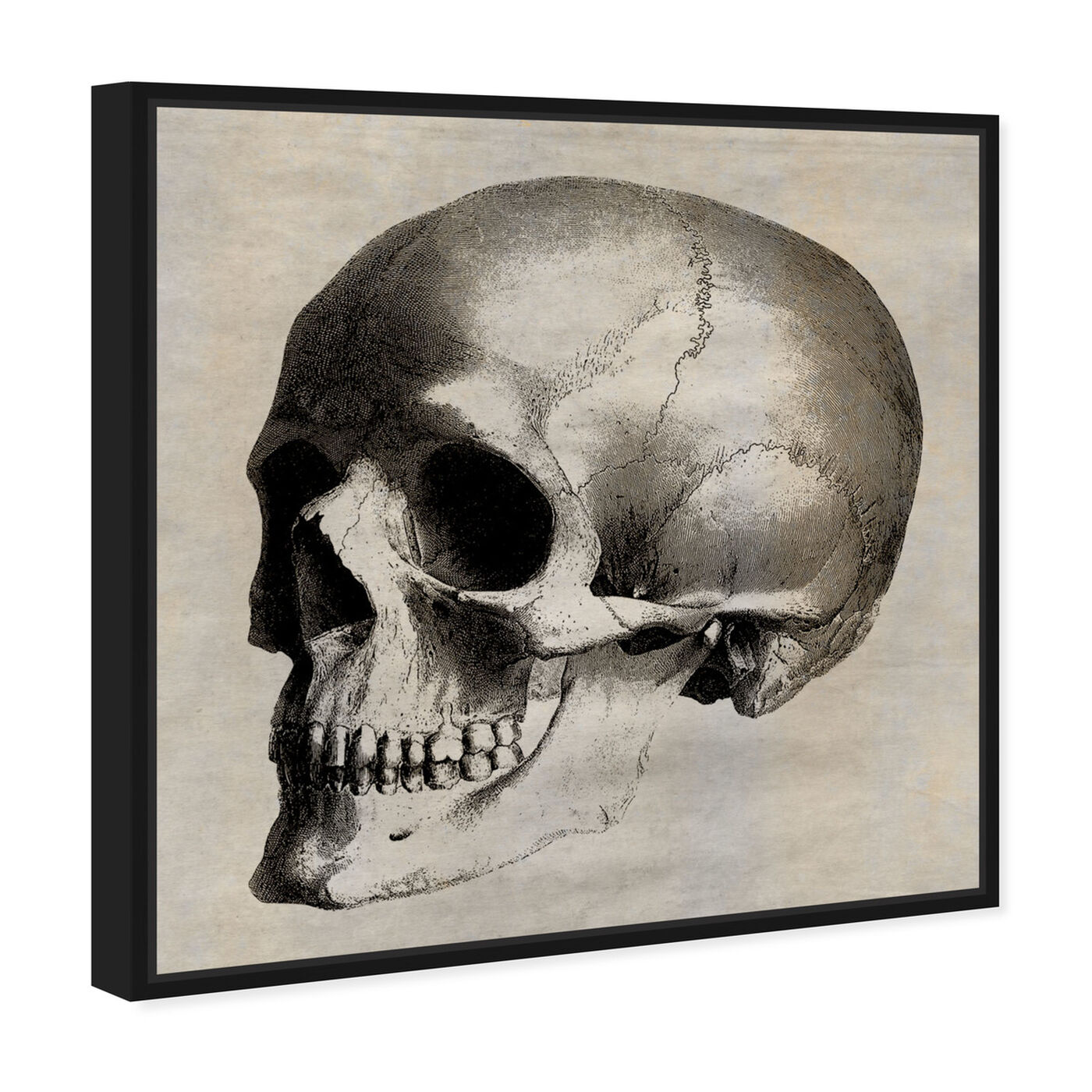 Angled view of Skull Side featuring symbols and objects and skull art.