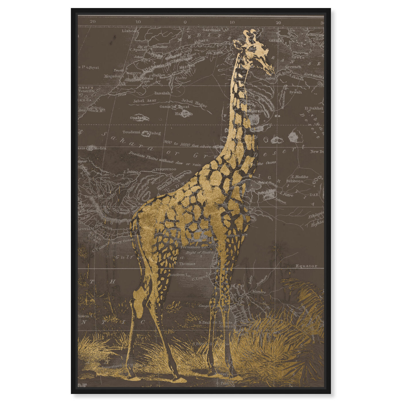 Front view of Giraffe Sahara featuring animals and zoo and wild animals art.