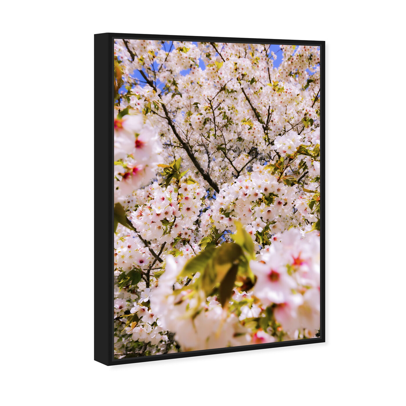 Angled view of Curro Cardenal - Cherries Beautiful featuring floral and botanical and gardens art.