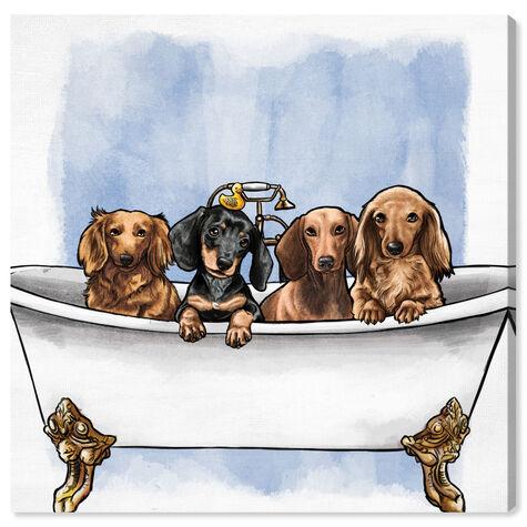 Dachs in The Tub