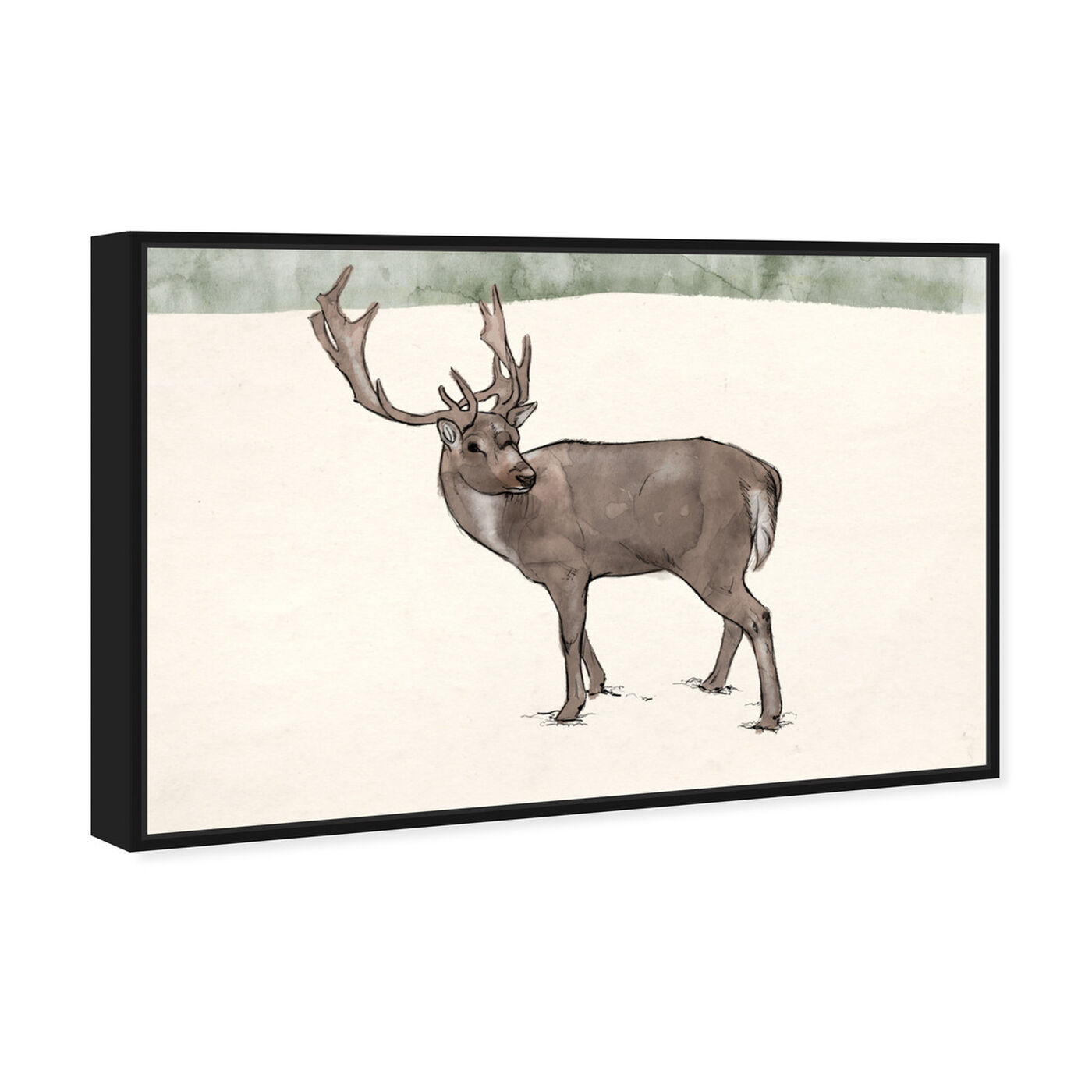 Angled view of Lone Reindeer featuring animals and zoo and wild animals art.