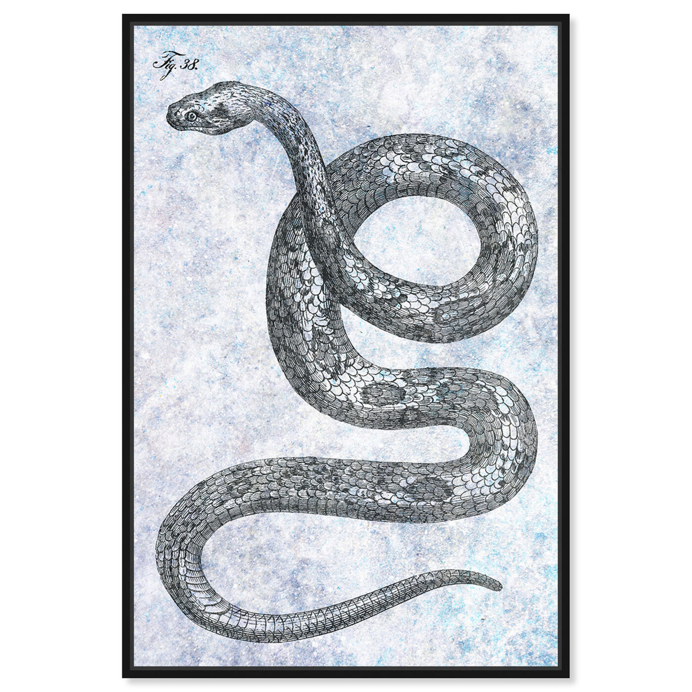 Front view of Single Snake featuring animals and zoo and wild animals art.