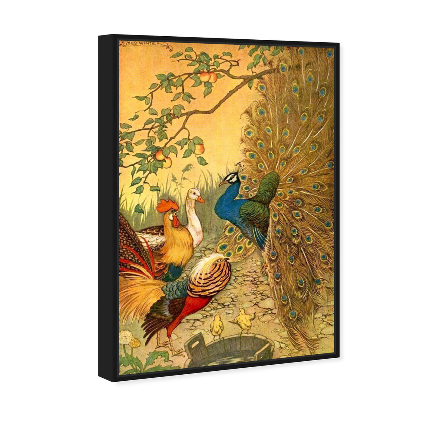 Angled view of The Peacock featuring animals and birds art.