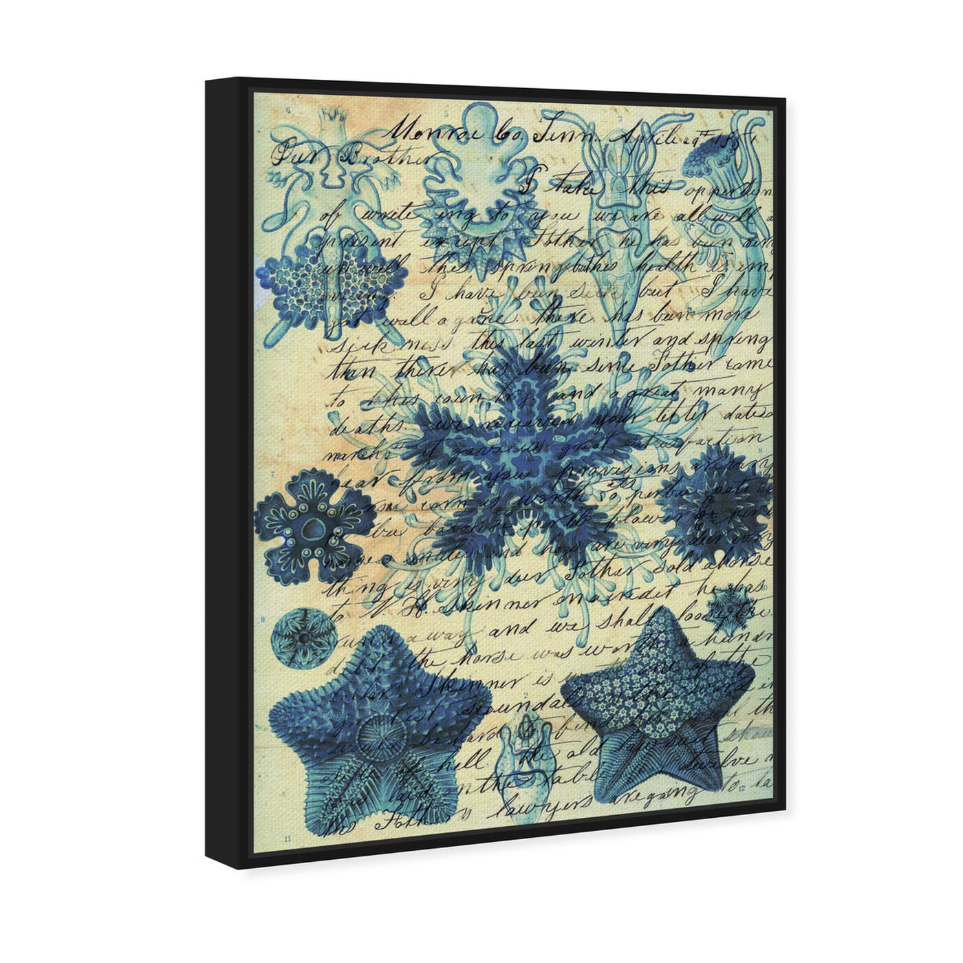 Angled view of Starfish in Blue featuring nautical and coastal and marine life art.