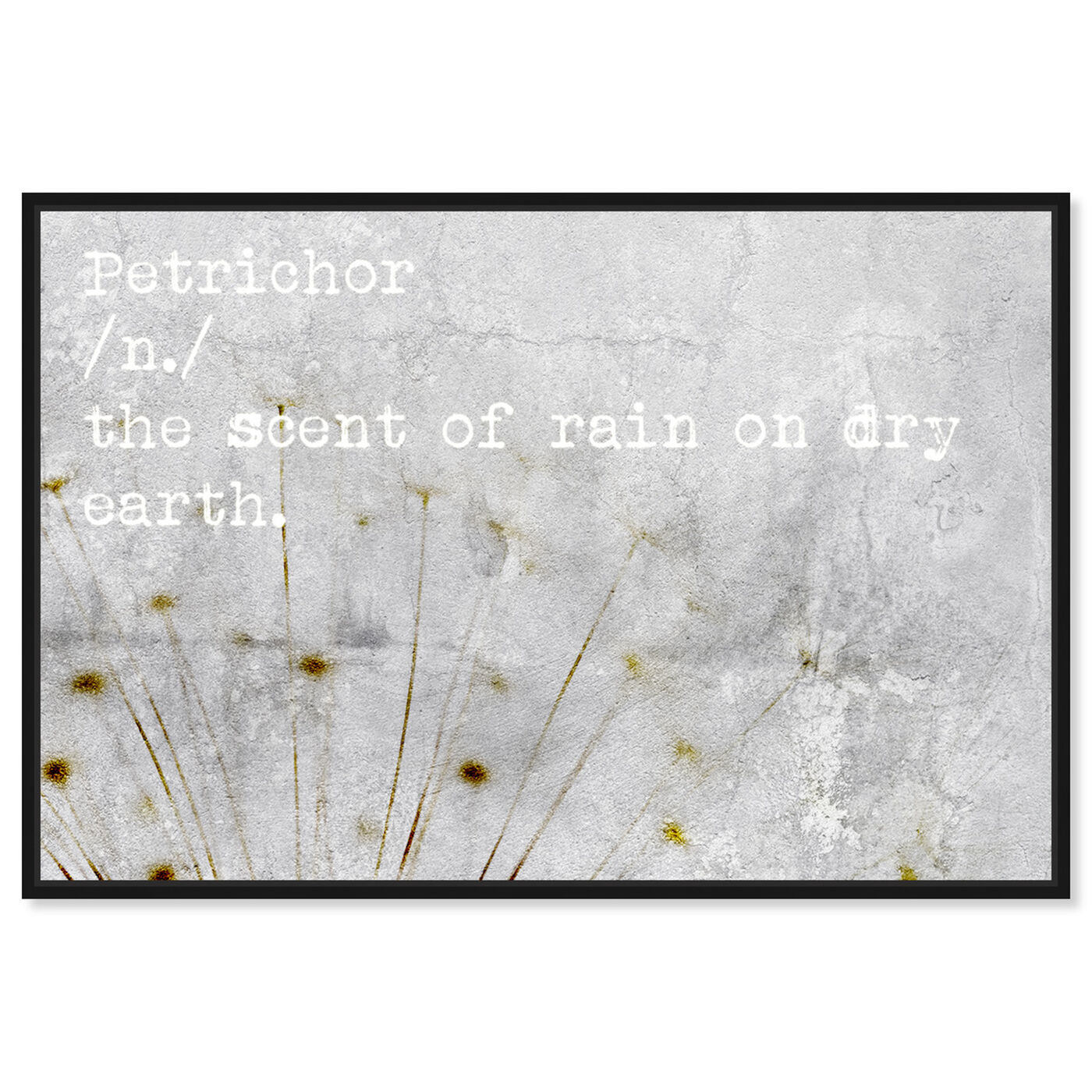 Front view of Petrichor featuring typography and quotes and quotes and sayings art.