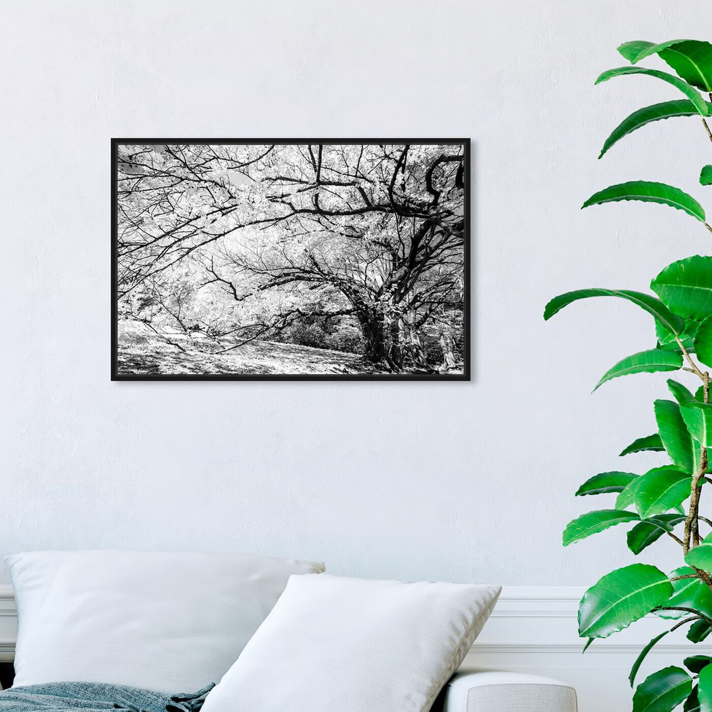 Hanging view of Curro Cardenal - Under the Tree Gray featuring floral and botanical and trees art.