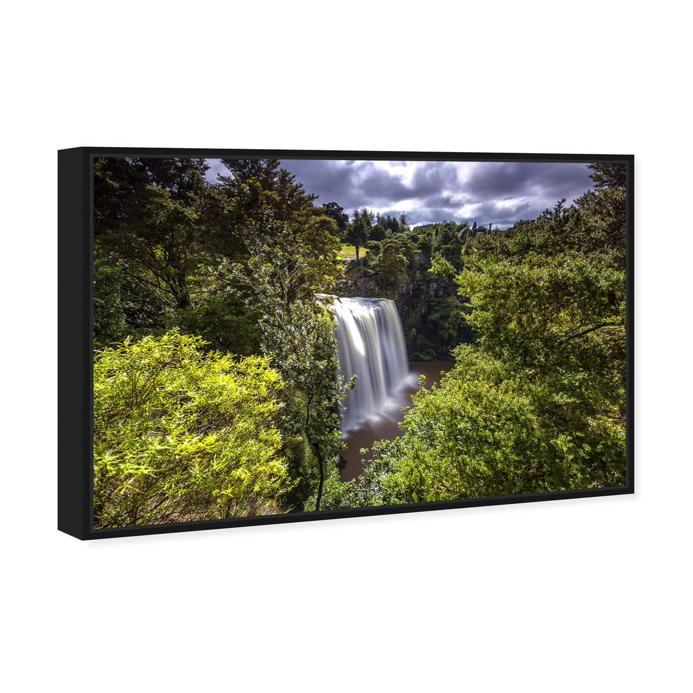 Angled view of Curro Cardenal - Rainforest IV featuring nature and landscape and nature art.