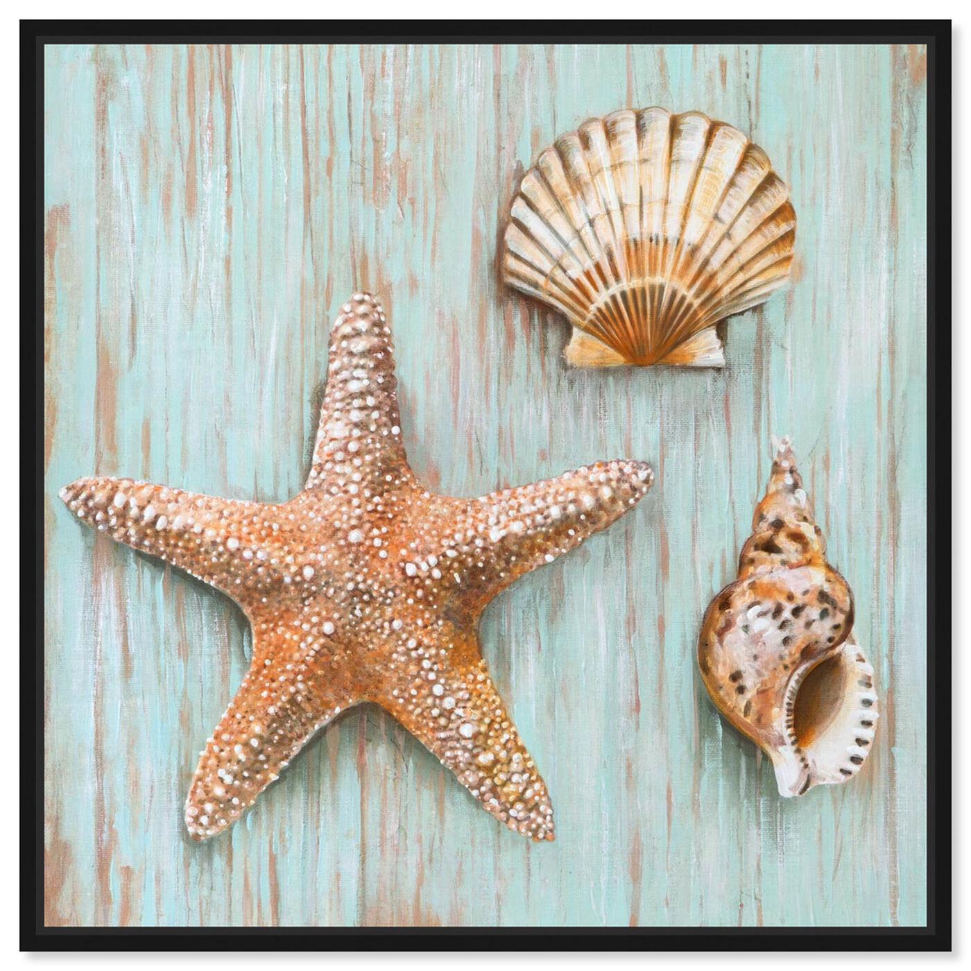 Front view of SAI - Maritimas Treasures featuring nautical and coastal and marine life art.