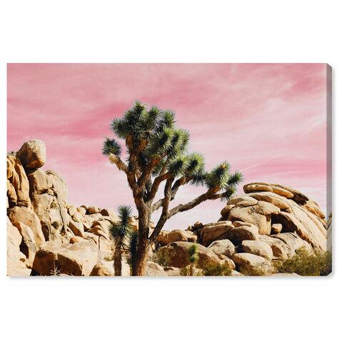 Joshua Tree Pink