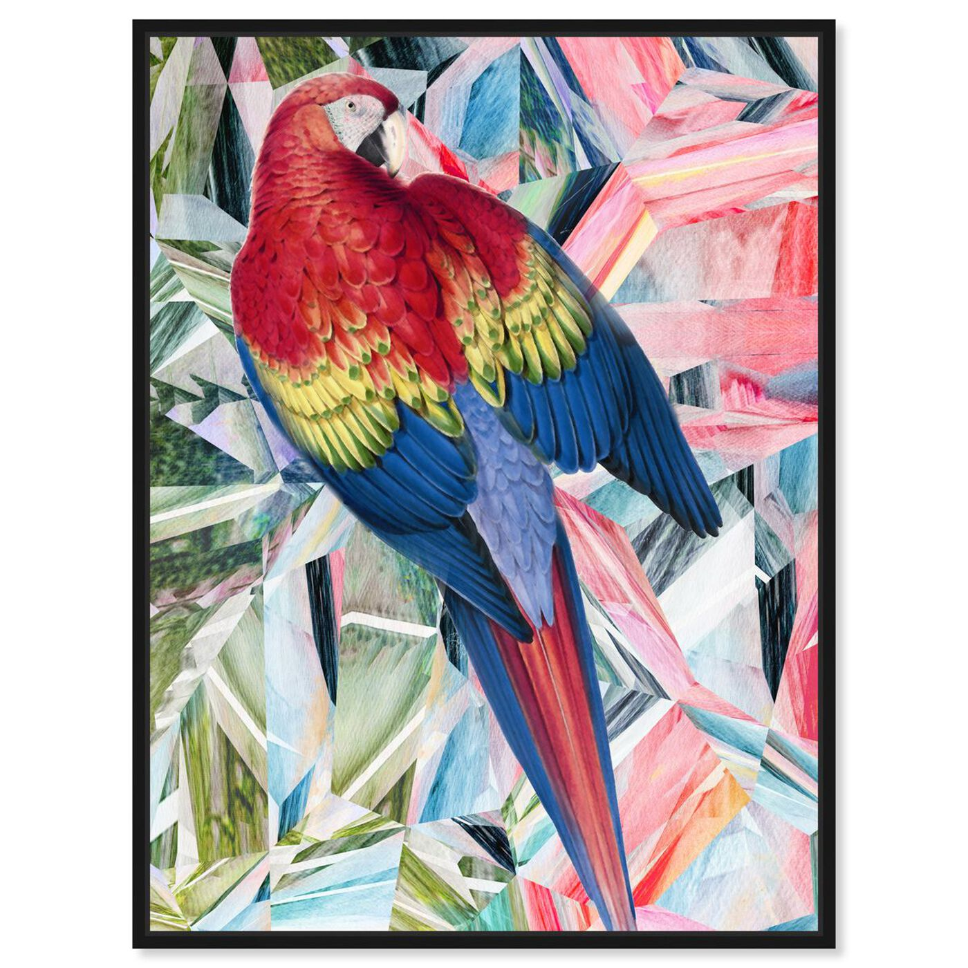 Front view of Modern Parrot featuring animals and birds art.