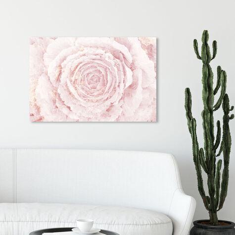 Blush Winter Flower Pink