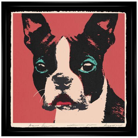 Doggy Warhol By Carson Kressley
