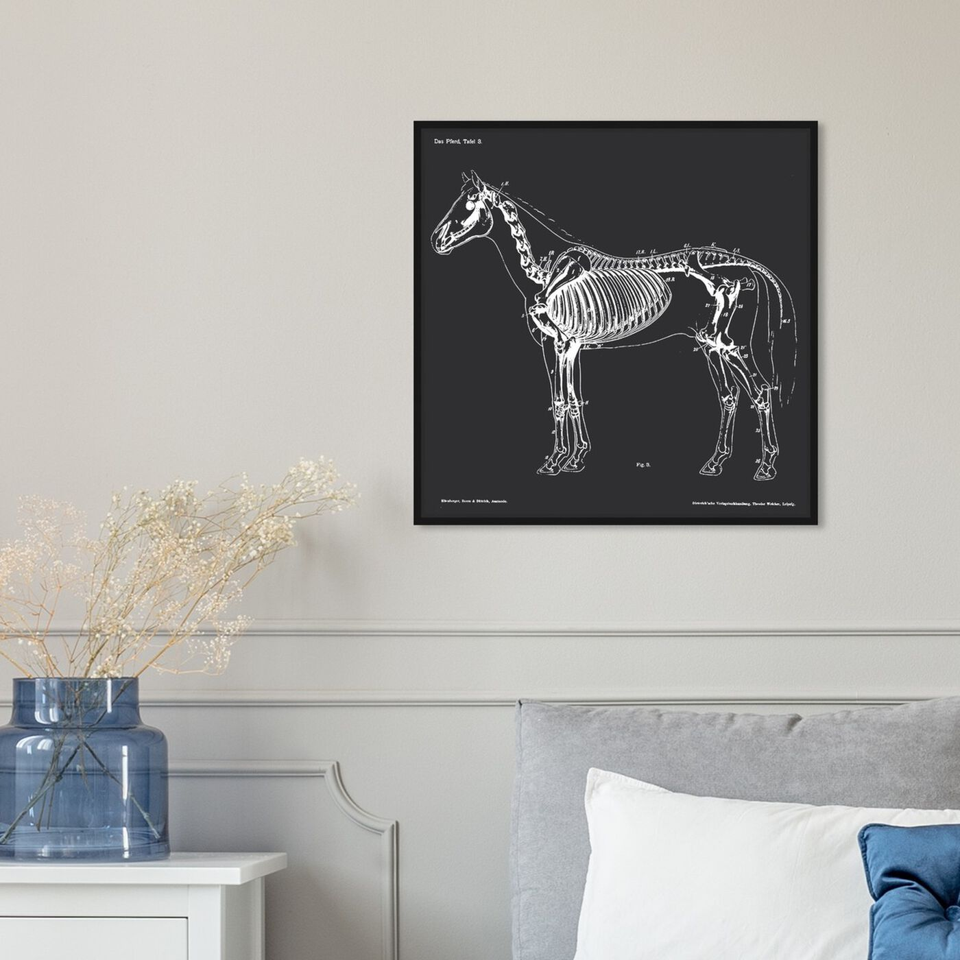 Hanging view of Squelette Du Cheval featuring animals and skeletons art.