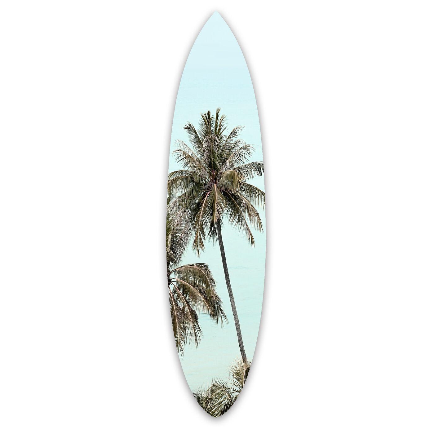 Palm Acrylic Surfboard
