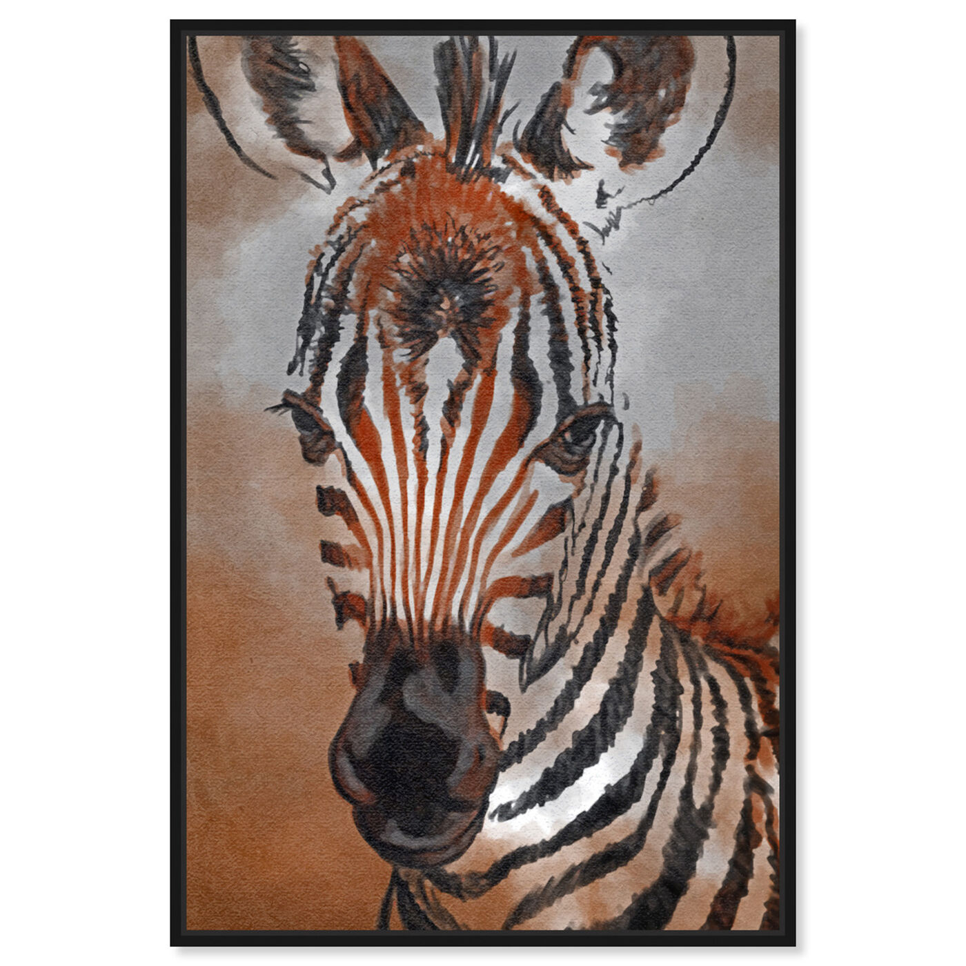 Front view of Zebra Colt featuring animals and zoo and wild animals art.