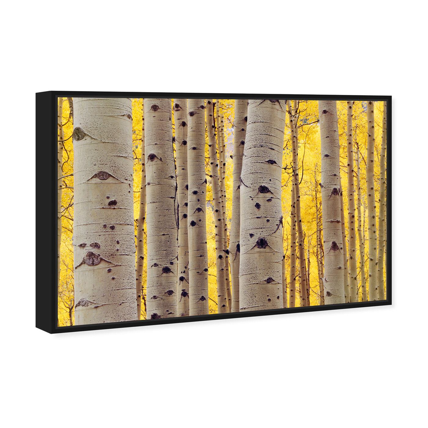 Angled view of Aspen Yellow featuring floral and botanical and trees art.