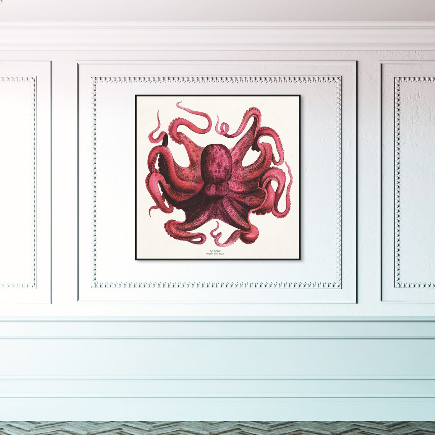 Hanging view of Polpo Rosso featuring animals and sea animals art.