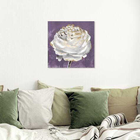 Lilac Ranunculus