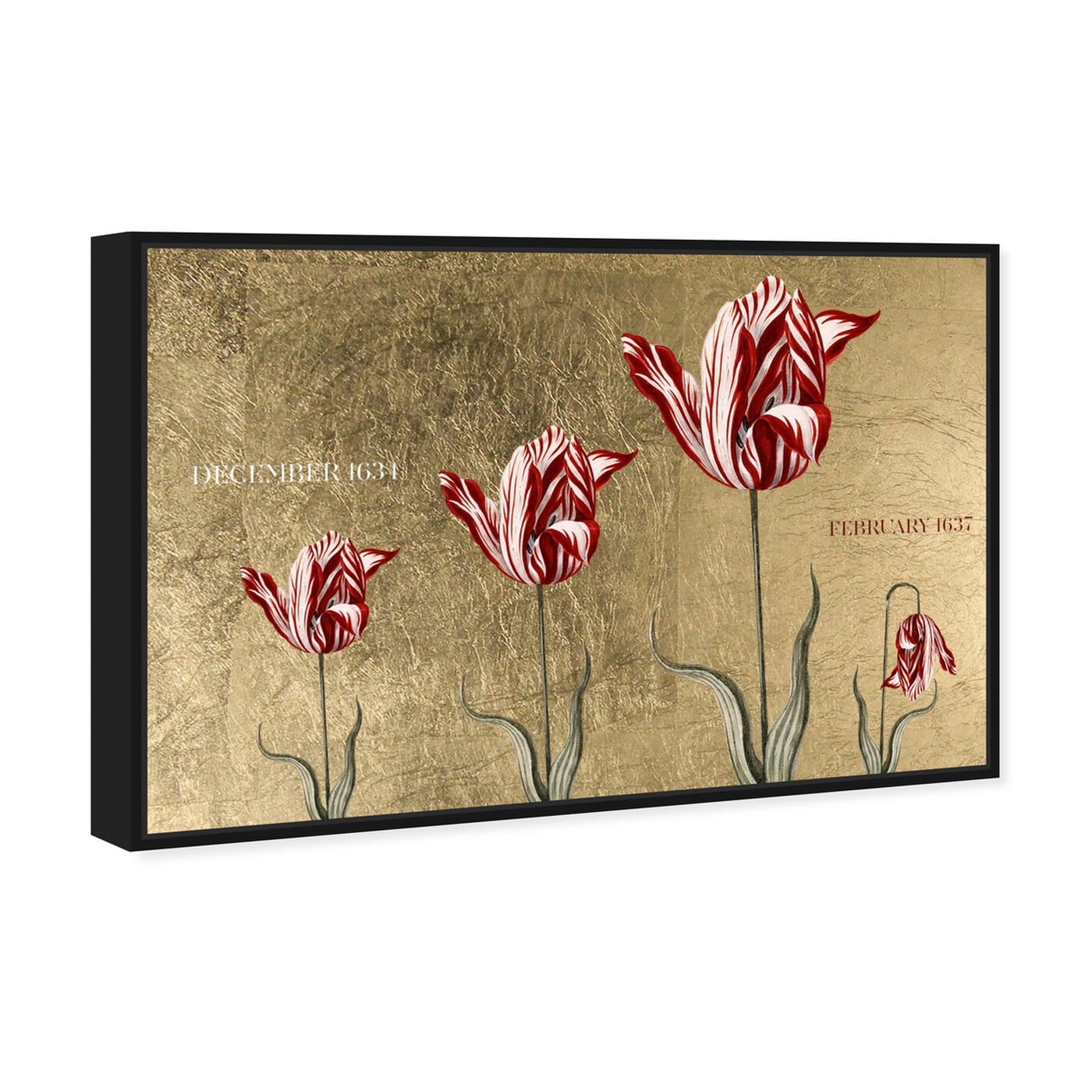 Angled view of Tulipomania featuring floral and botanical and florals art.