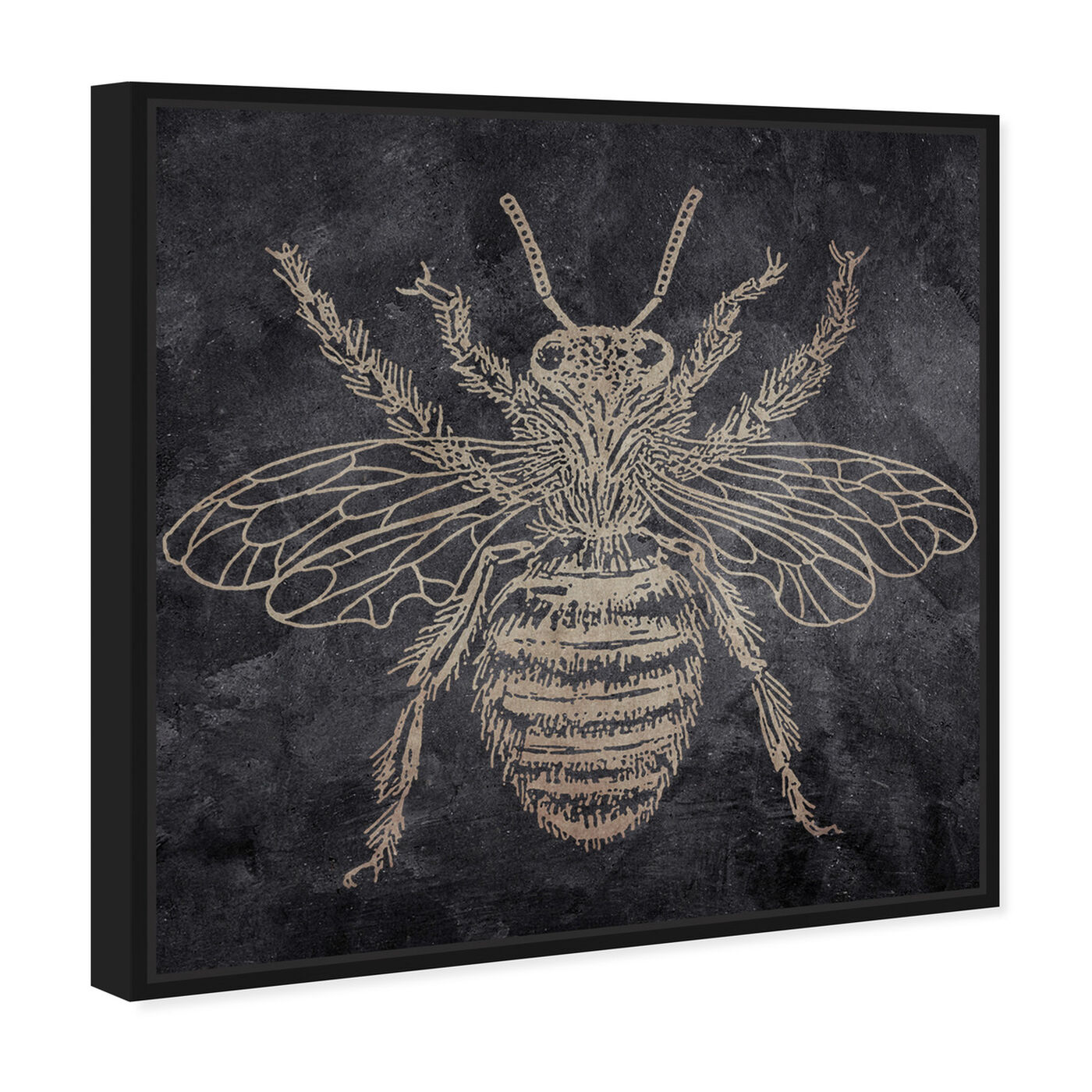 Angled view of Bee featuring animals and insects art.