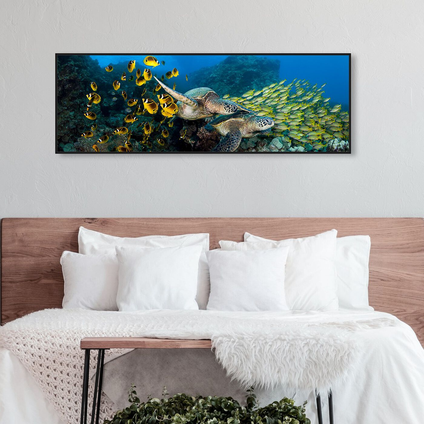 Hanging view of School of Fish and Turtle by David Fleetham featuring nautical and coastal and marine life art.