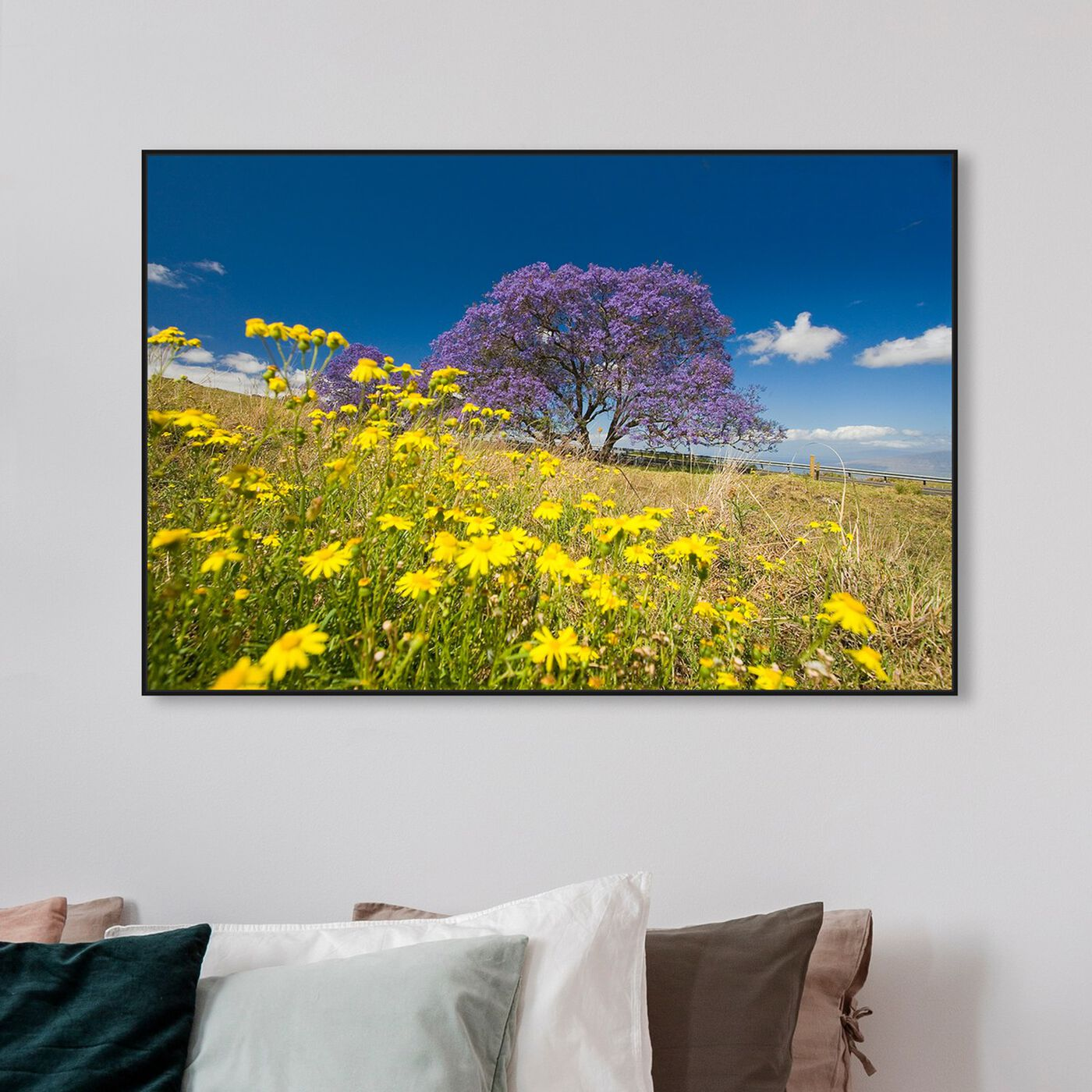 Hanging view of Jacaranda Tree by David Fleetham featuring nature and landscape and country landscapes art.