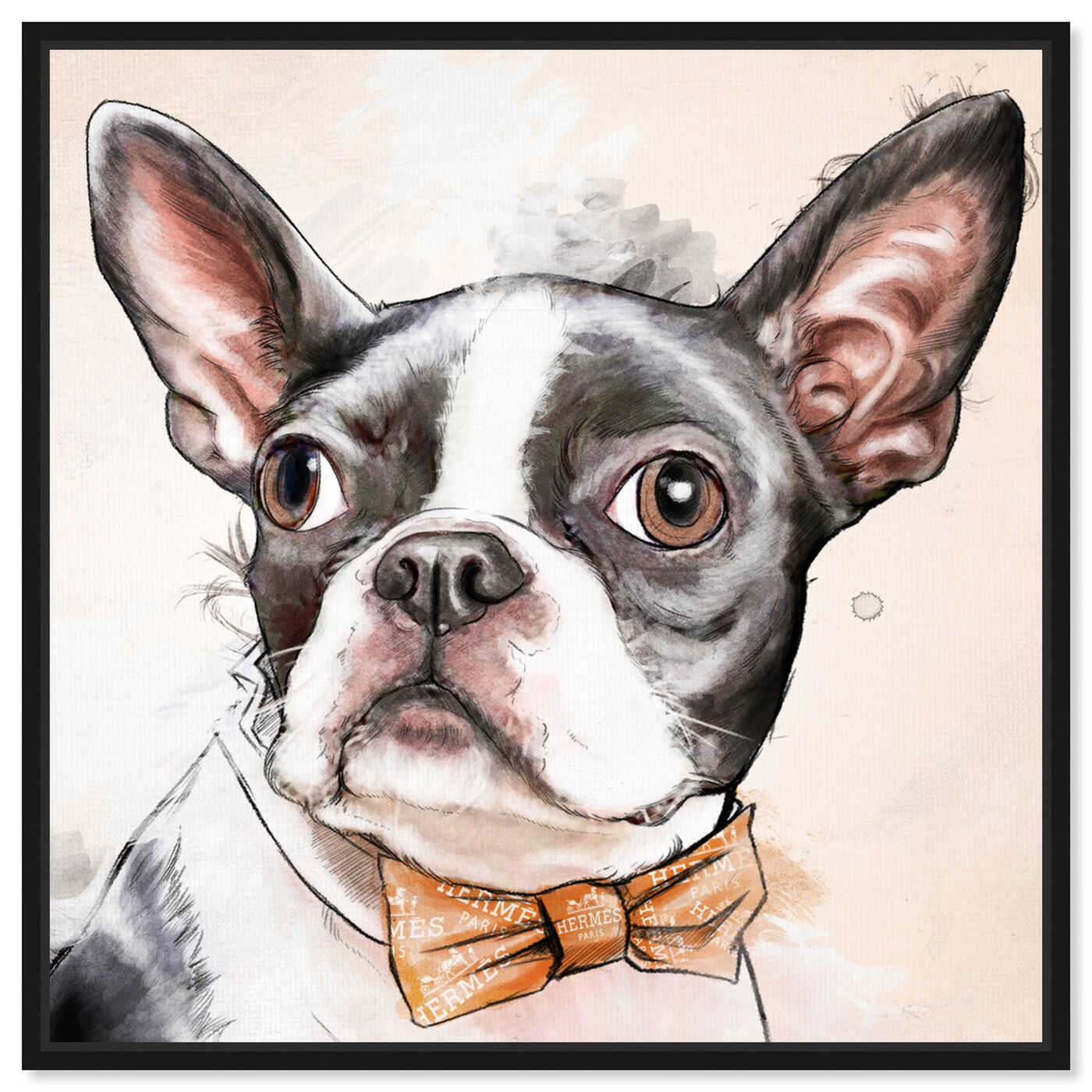 Front view of Boston Terrier Watercolor featuring animals and dogs and puppies art.