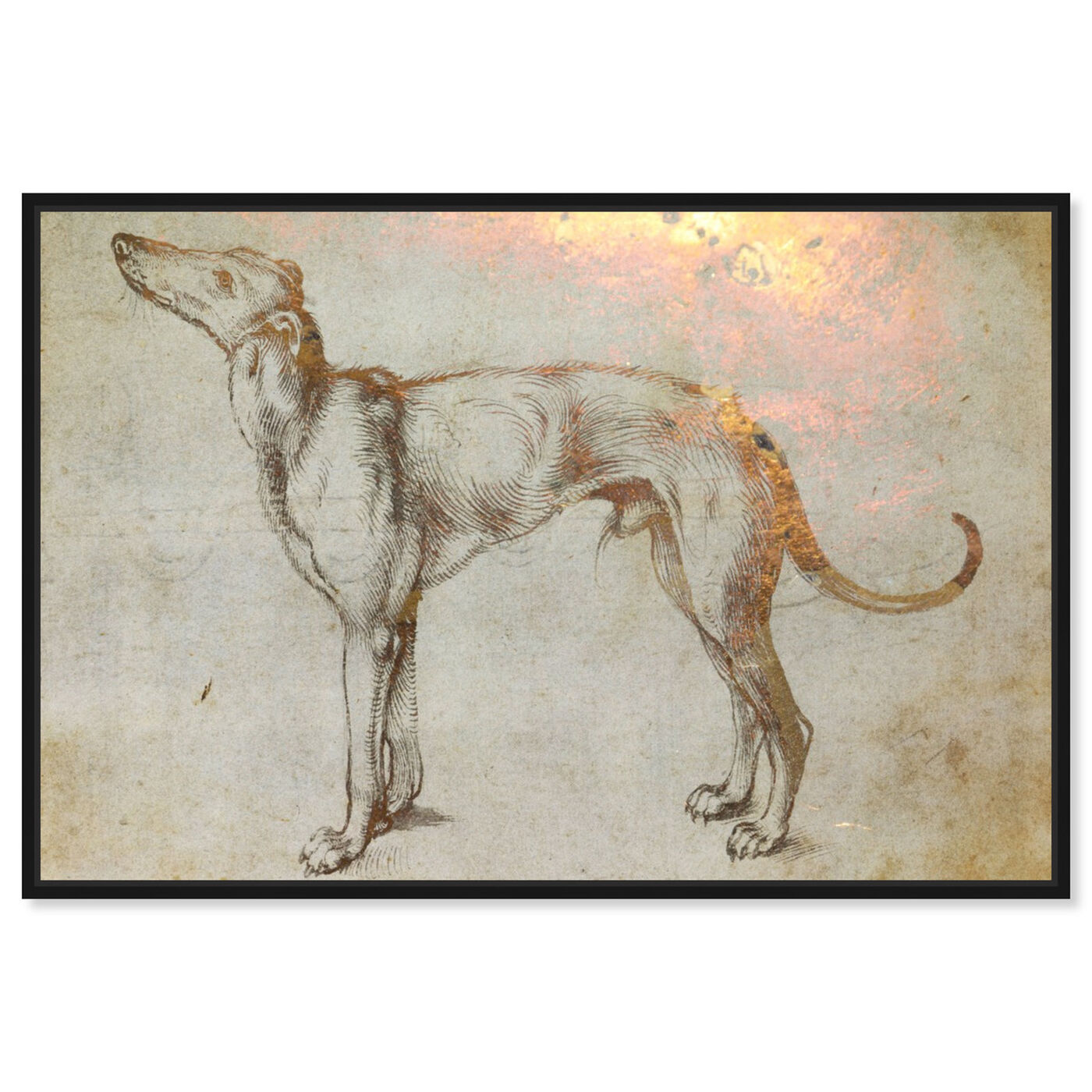 Front view of Galgo featuring animals and dogs and puppies art.