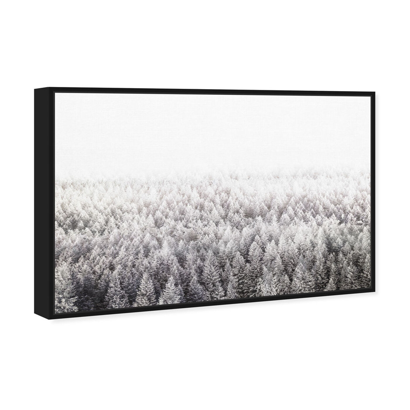 Angled view of Pine Forest  Gray featuring nature and landscape and forest landscapes art.
