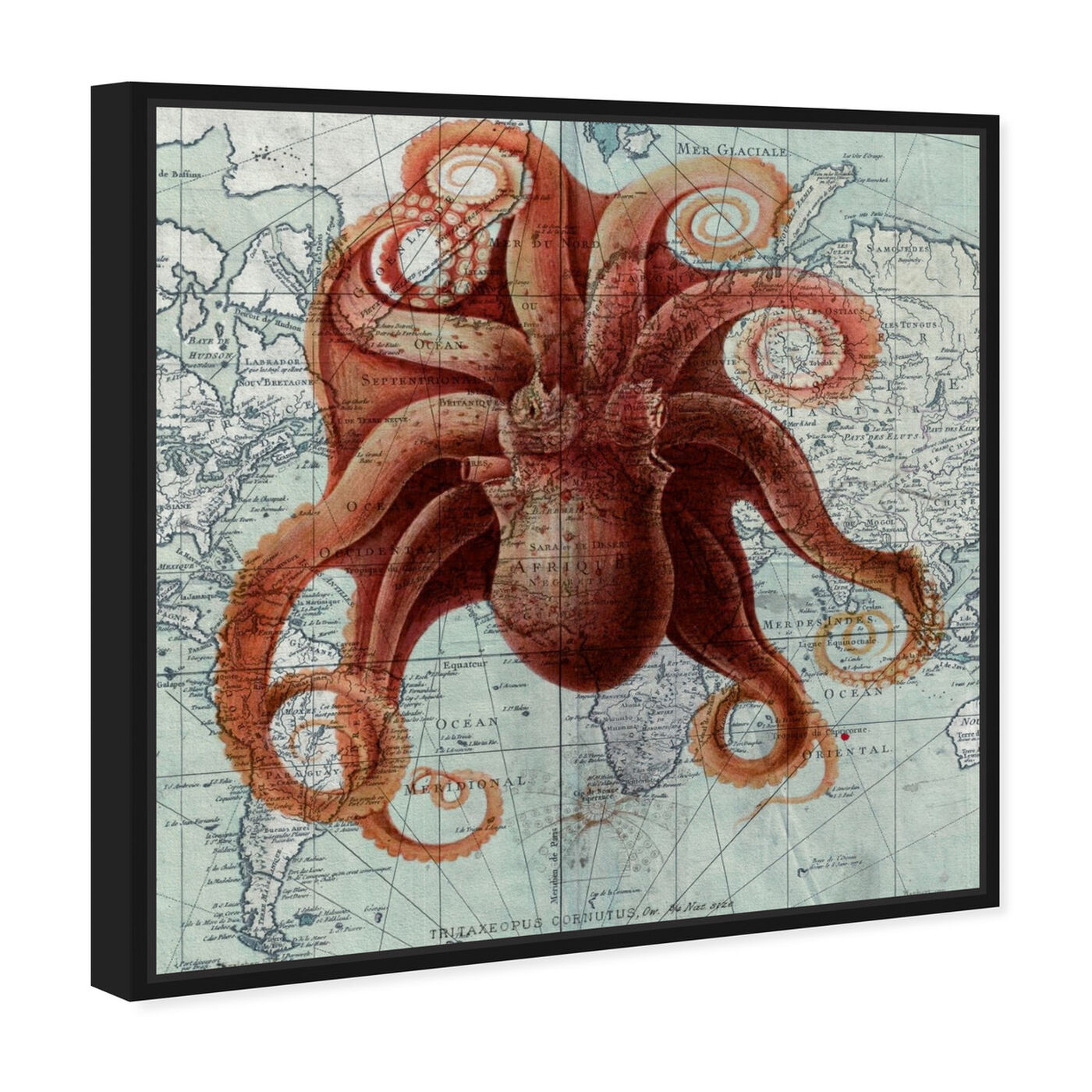 Angled view of Octopus I featuring nautical and coastal and marine life art.