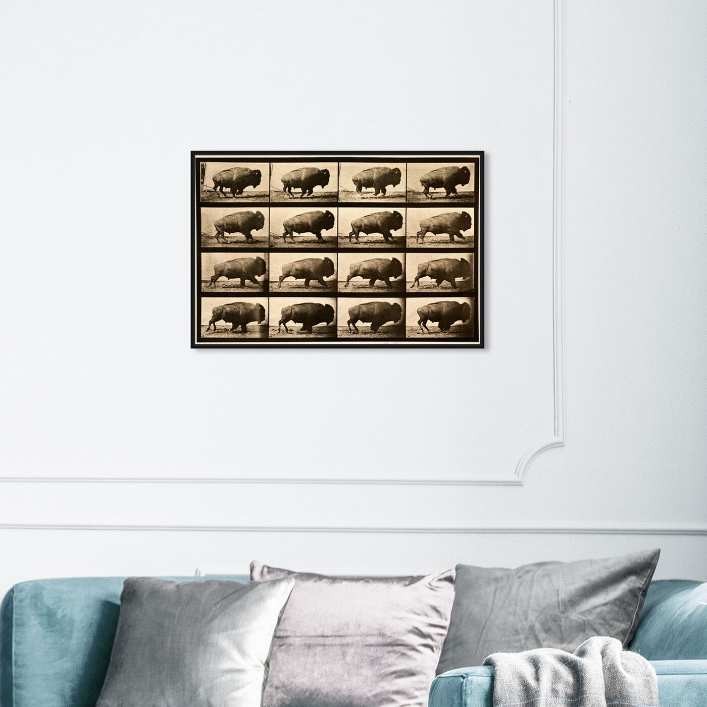 Hanging view of Buffalo In Motion featuring animals and zoo and wild animals art.