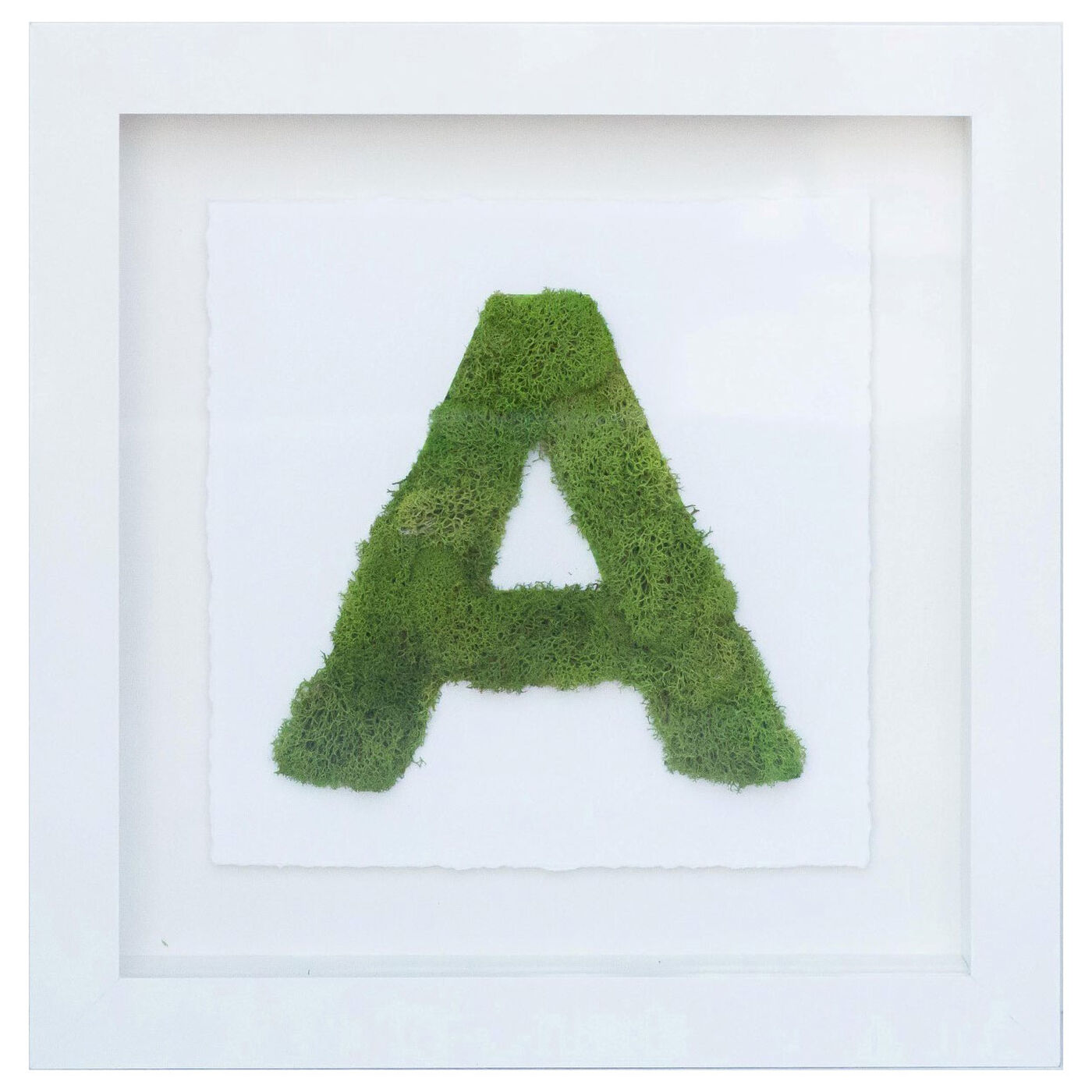 The Letter Nature (A-Z)