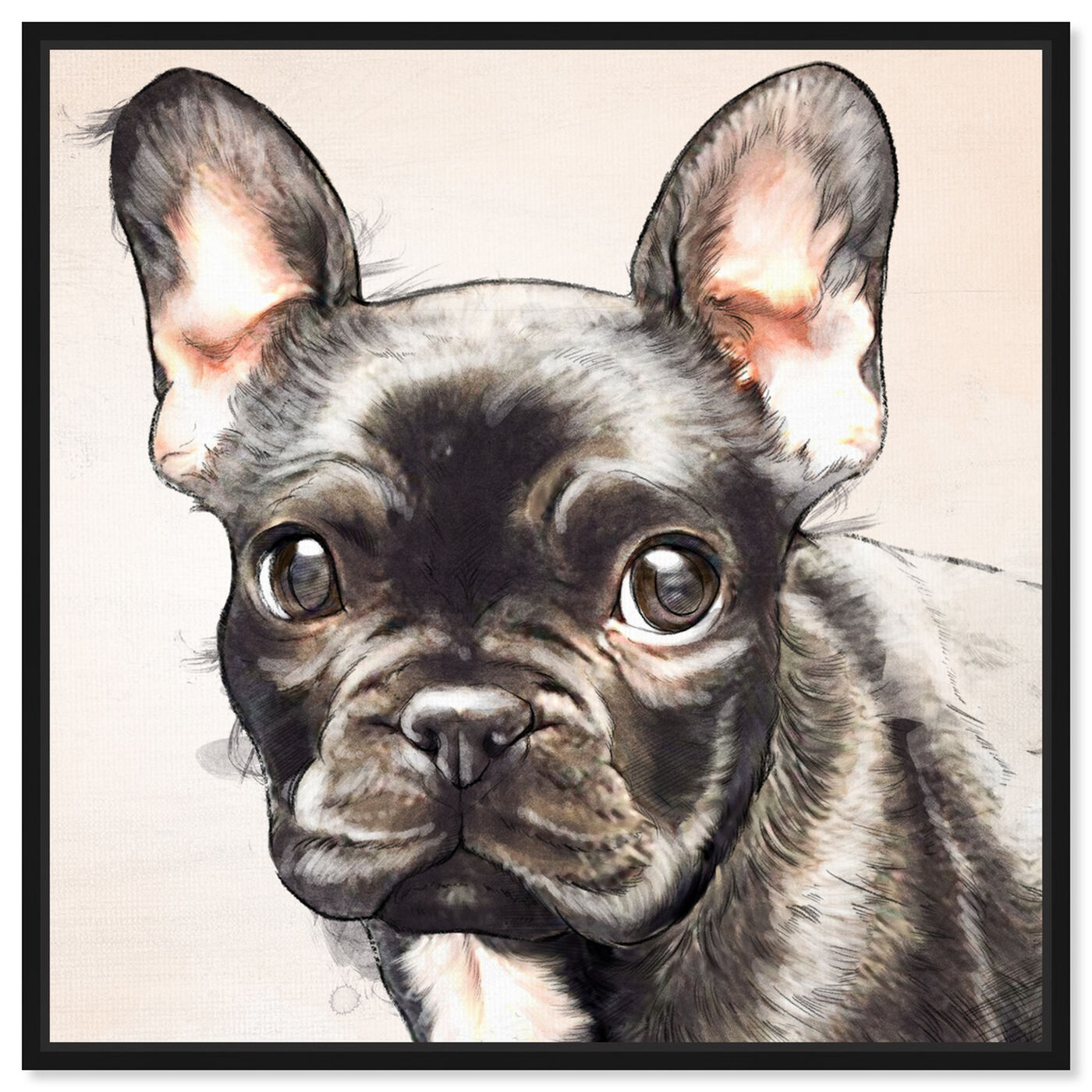 Front view of Frenchie Watercolor Black featuring animals and dogs and puppies art.