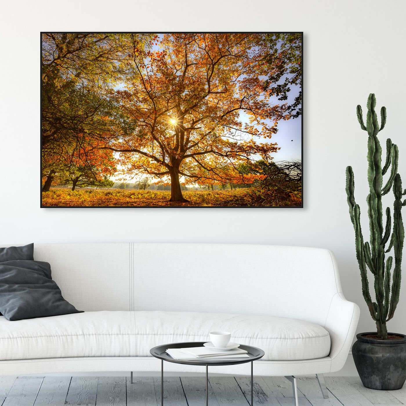Hanging view of Curro Cardenal - Autumn Wisdom tree featuring nature and landscape and forest landscapes art.