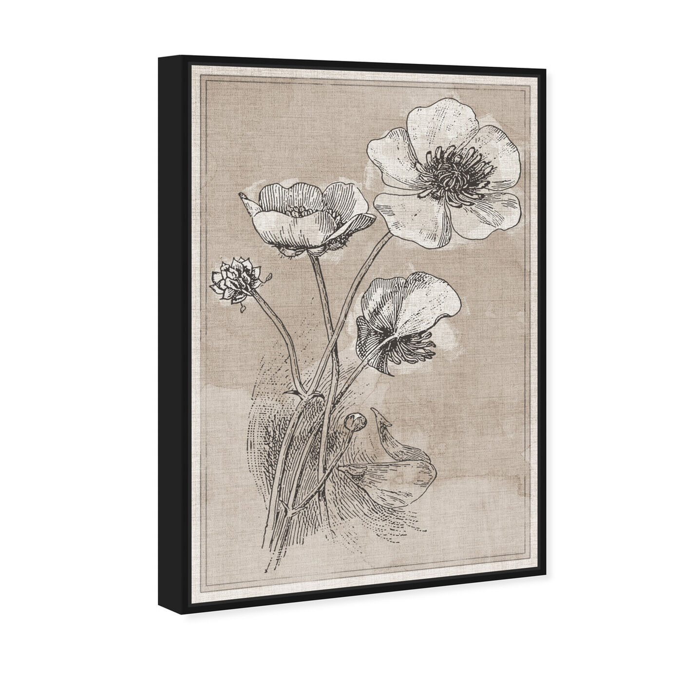 Angled view of Poppies on Linen featuring floral and botanical and florals art.