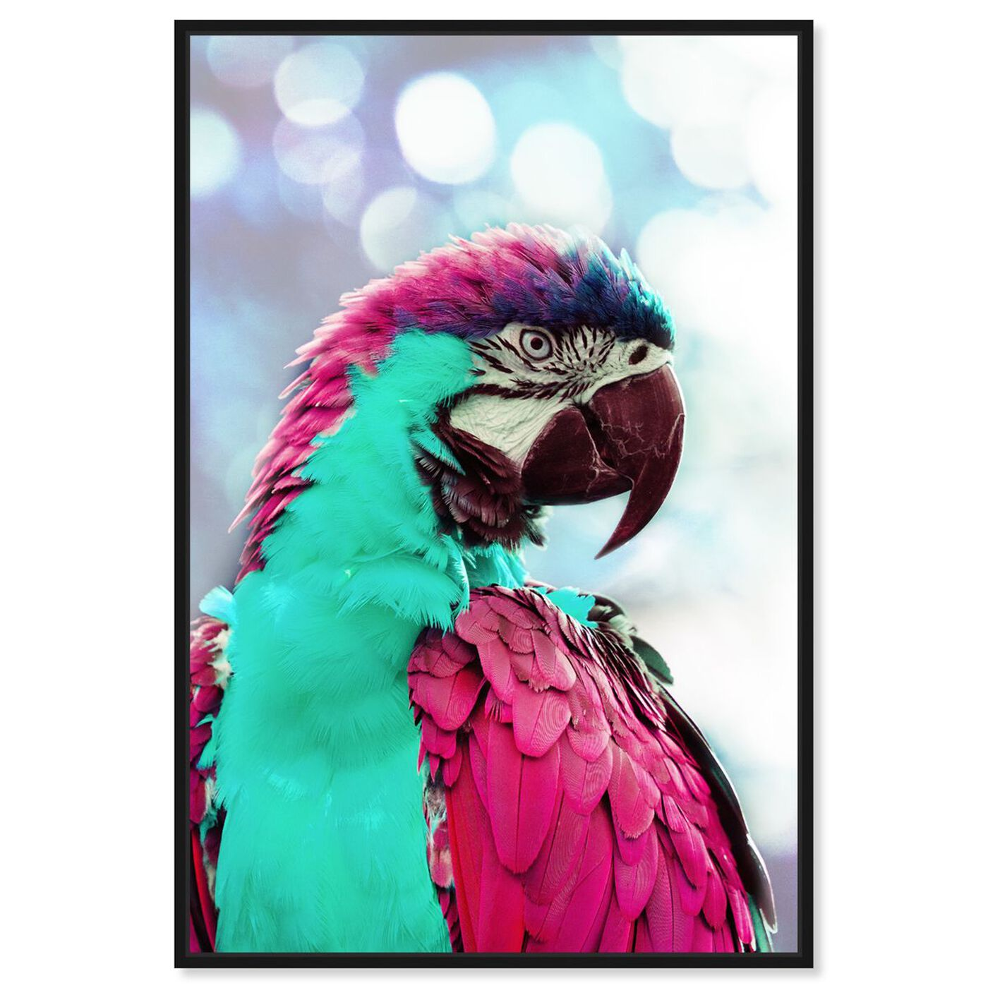 Front view of Pink Turquoise Macaw featuring animals and birds art.