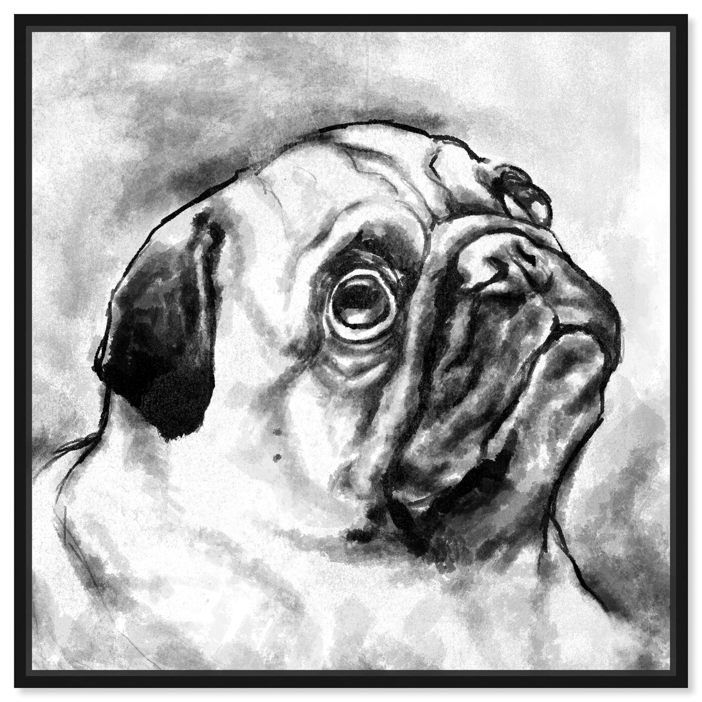 Front view of Pug I featuring animals and dogs and puppies art.