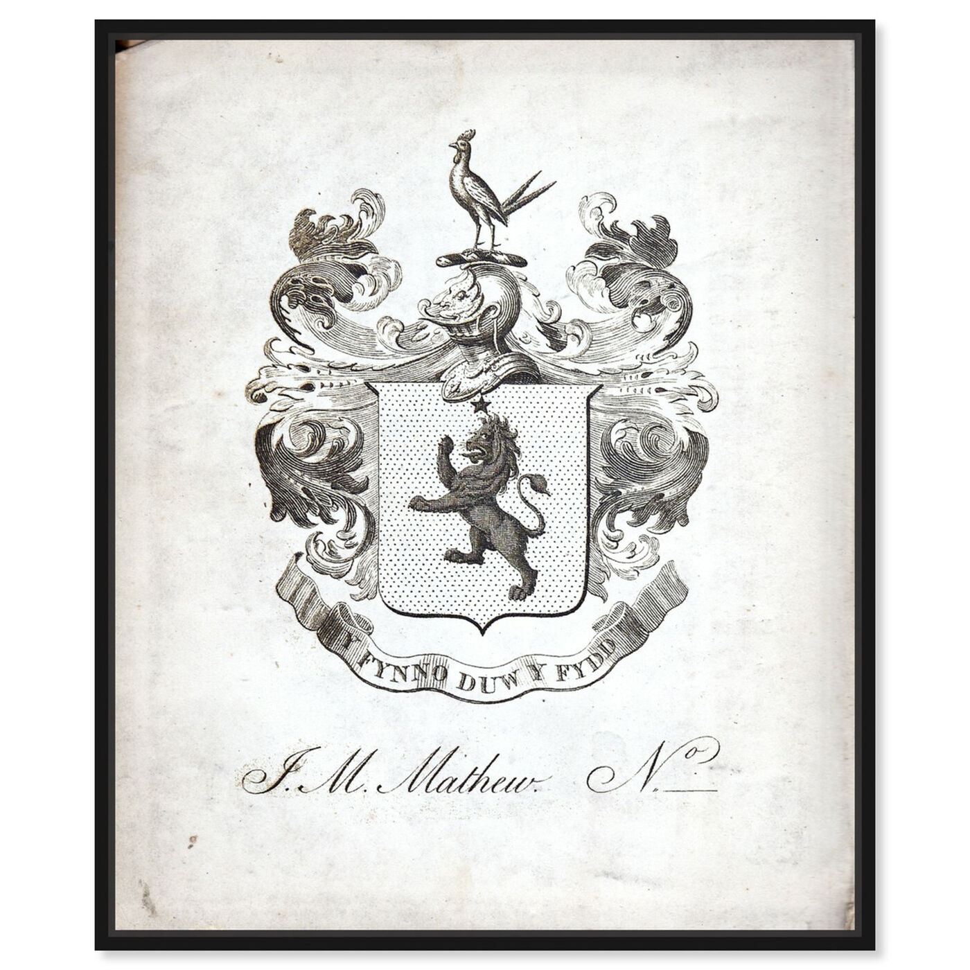 Front view of Armorial Engravings IV featuring world and countries and european cultures art.