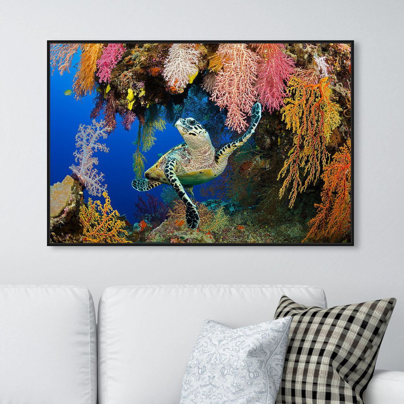 Hanging view of Hawksbill Turtle Fiji by David Fleetham featuring nautical and coastal and marine life art.