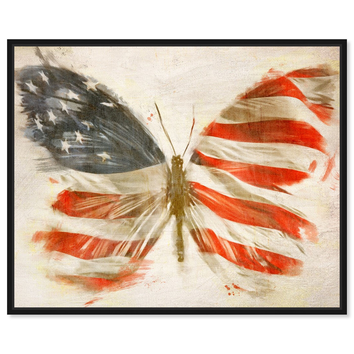 Front view of American Butterfly featuring maps and flags and american countries flags art.