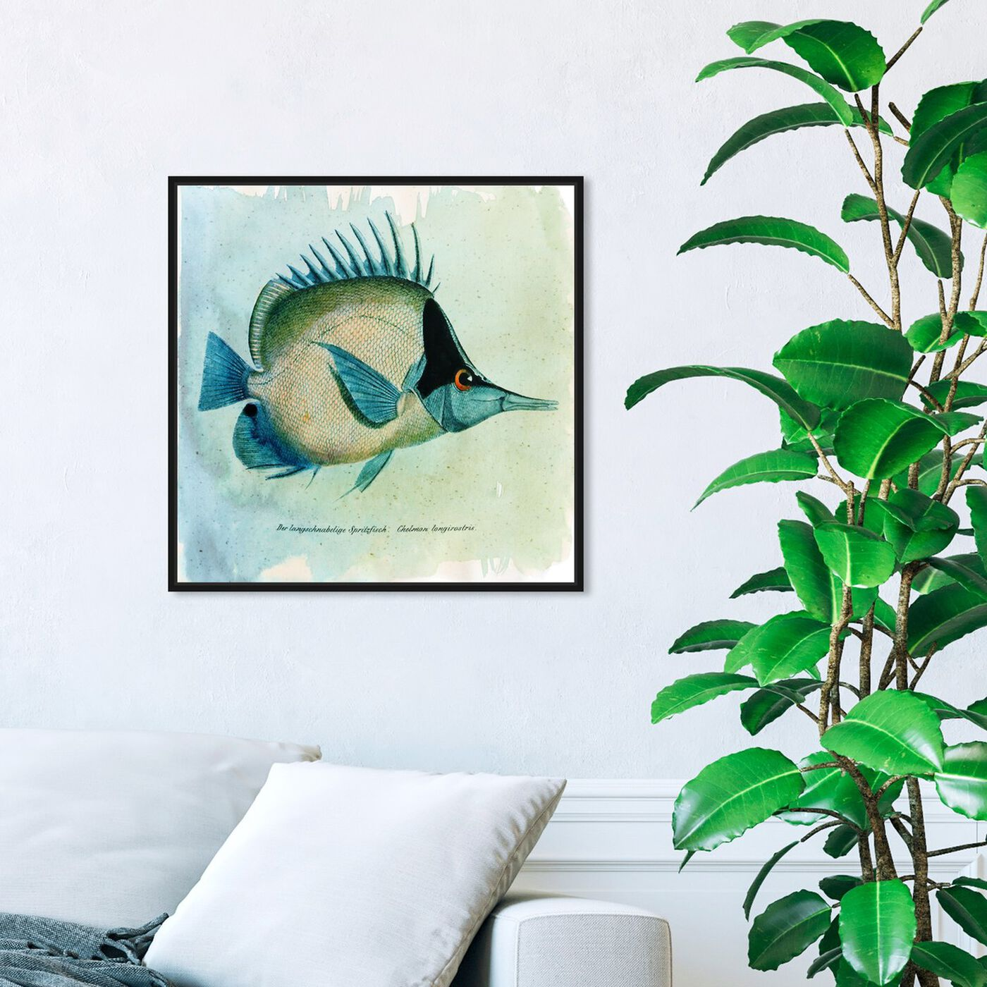 Hanging view of Butterfly Fish featuring animals and sea animals art.